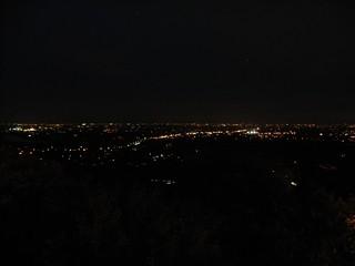 月見の森夜景