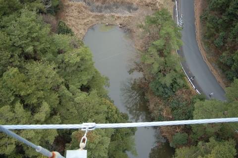 つり橋から見た景色