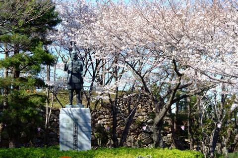 家康像と桜
