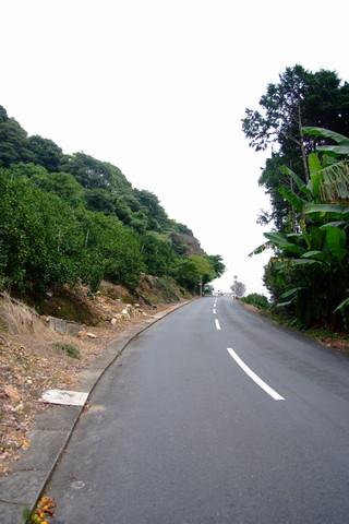 細江公園の坂