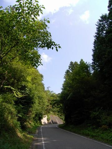 元気村への坂道
