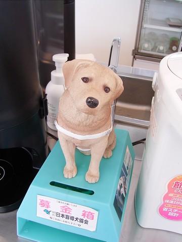 盲導犬の里 富士ハーネス