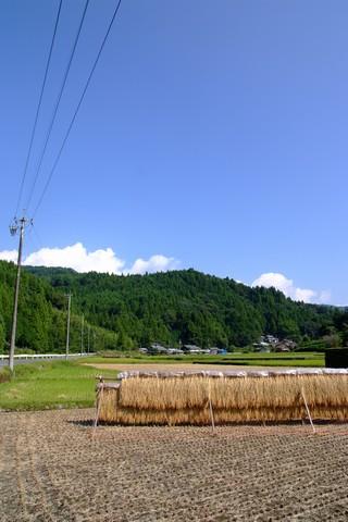 田舎的風景