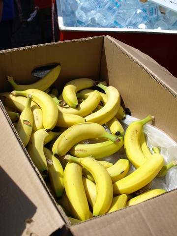 頂上でもバナナ♪