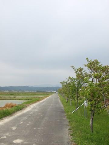 天浜線沿い