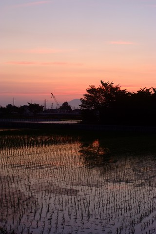 萬葉公園の夕日