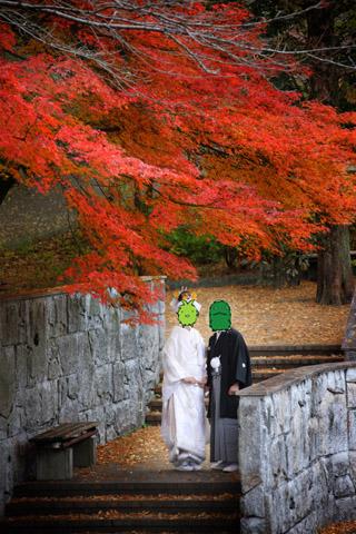 岐阜公園・日中友好庭園