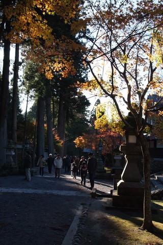 袋井・法多山の紅葉