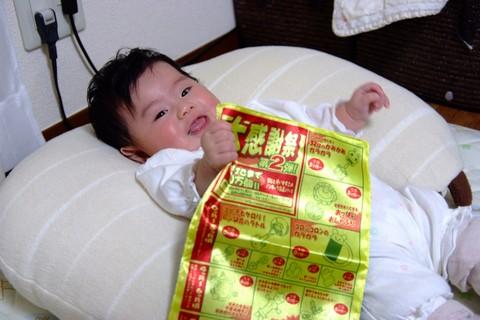 なめても安心 赤ちゃん専用折り込みチラシ