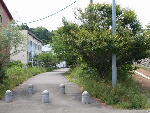 小堤山公園