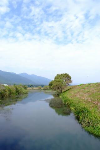 津屋川の彼岸花