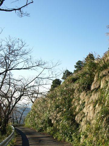 秋の粟ヶ岳ヒルクライム
